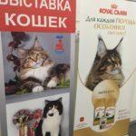 «Кошкин дом» на «Кэт-Салон-Октябрь»
