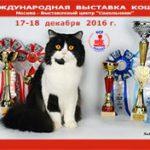 «Кошкин дом» на «Кэт-Салон-Декабрь» АНОНС