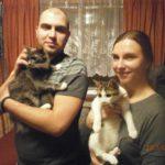Котята нашли новый дом